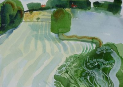 Stripey Field. Water colour 26x21cms